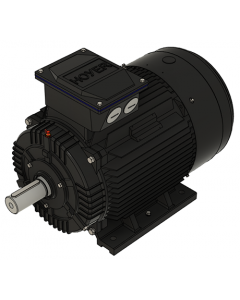 IE3 Elmotor 37,0 kW 400VD/690VY 50 Hz 3000 RPM  5522001100
