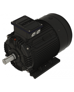 IE3 Elmotor 45,0 kW 400VD/690VY 50 Hz 3000 RPM  5522250100