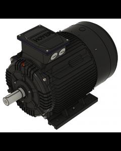 IE3 Elmotor 45 kW 230VD/400VY 50Hz 3000 RPM 5522250150