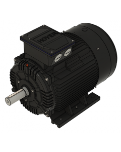 IE3 Elmotor 55,0 kW 400VD/690VY 50 Hz 3000 RPM  5522500100