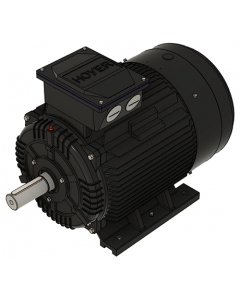 IE3 Elmotor 55,0 kW 230VD/400VY 50 Hz 3000 RPM 5522500150