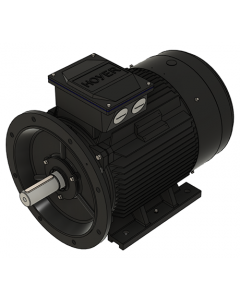 IE3 Elmotor 55,0 kW 400VD/690VY 50 Hz 3000 RPM 5522500400